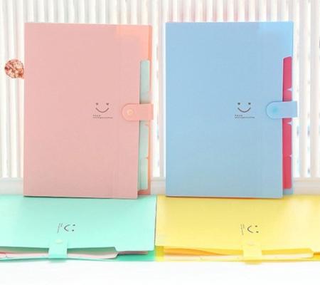 PVC Folder 5